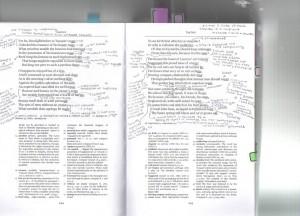 English 205 annotiation