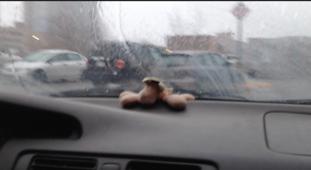 This is our driving companion. His name is Rodney. He is fab.